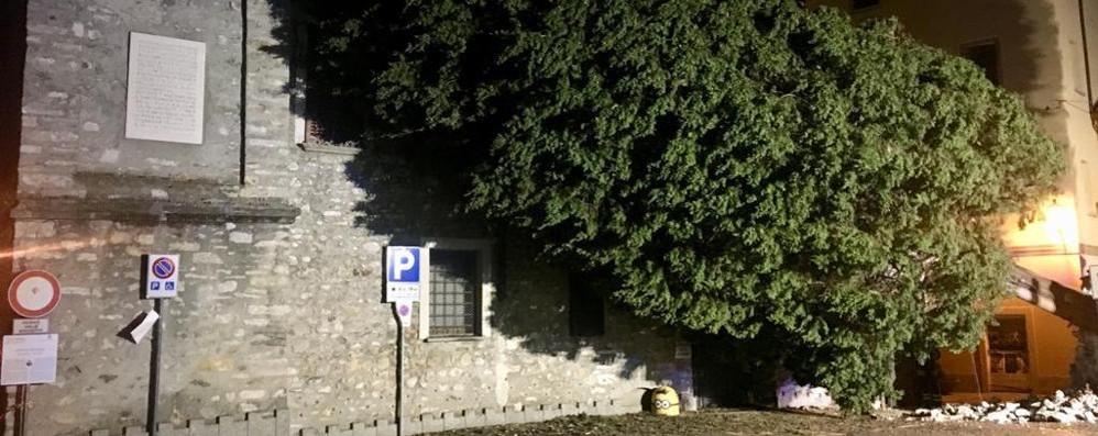 Dramma alla Pesa Vegia  Albero travolge una coppia
