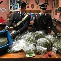 Cremeno, in manette tre gemelli   per 4 kg di marijuana