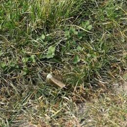Sondrio, paura sul colle di Triangia: «Sfiorati da colpi di fucile»