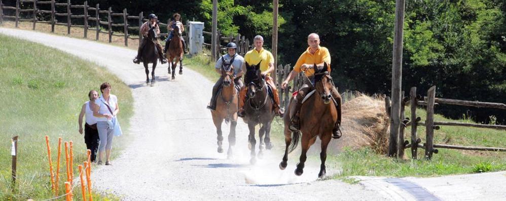Parco del Curone, scatta la linea dura  Sanzioni a moto, biciclette e cavalli