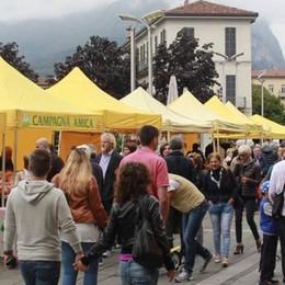 «Una nuova vetrina per i prodotti locali»  Il sindaco ora pensa al mercato agricolo