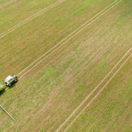 Agricoltura: verso slittamento riforma Pac, tempi stretti