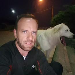 Carenno, cane muore   dopo le minacce