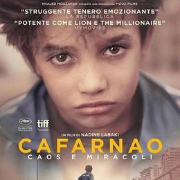 La  stella di Cannes  Occasione al cinema