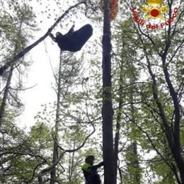 Precipita con il parapendio  Salvato a dodici metri