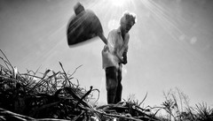 Il Brasile rurale che lotta per la vita  La riscossa parte da due mostre