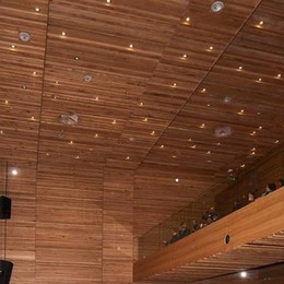 Merate, paura all'auditorium  Si stacca un faretto dal soffitto