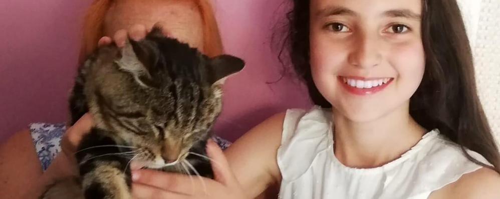 «Una protesi a Bambù  gattino senza zampa»  Emma a caccia di fondi
