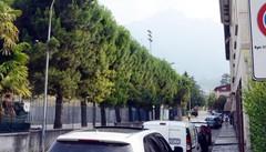 Mandello, stranieri lenti a pagare le multe  Debiti per novemila euro con il Comune