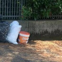 Calolziocorte, il pugno di ferro serve Prime multe a chi abbandona i rifiuti
