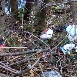 Colico, allarme spaccio a Posallo  «Serve un'azione più risoluta»