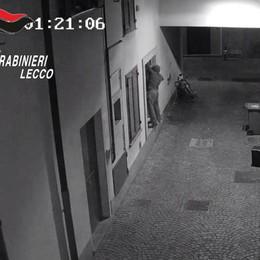Oggiono, furti in otto negozi in bicicletta  Arrestato grazie alle telecamere