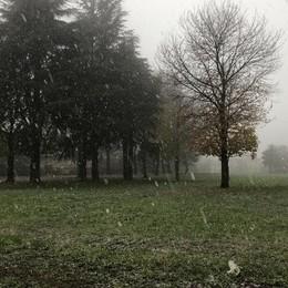 Merate, un centro sportivo nuovo di zecca  Davanti al bosco didattico del Cavaliere