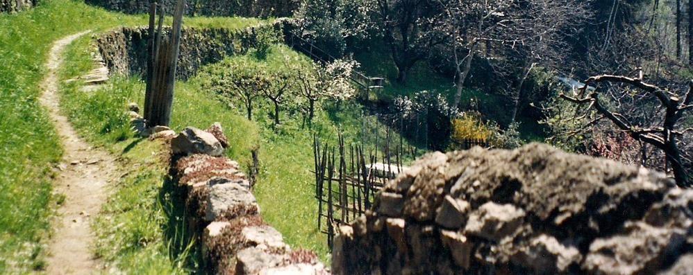 Da Lecco ad Abbadia a piedi  Sentiero viandante appaltato