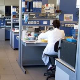 Coronavirus, l'Oms: 10 volte  più letale dell'influenza