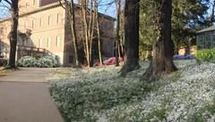 Merate, Villa Confalonieri torna alle origini  Nuovo look ispirato a cento anni fa
