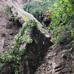 Valmadrera, cede muro di tre metri  Detriti nel torrente Rosè e sul sentiero