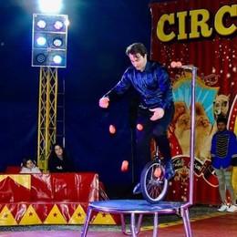 Circo, show in streaming  «Ci servono 50 mila euro»