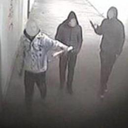Colico, raid vandalico sul treno  Denunciati cinque ragazzi, 13 daspi