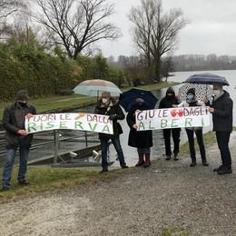 Merate: «Giù le mani dagli alberi  La riserva dev'essere difesa»