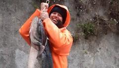 Pesca elettrica per catturare i siluri